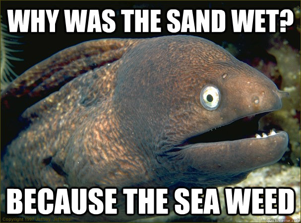 why was the sand wet? because the sea weed - why was the sand wet? because the sea weed  Bad Joke Eel