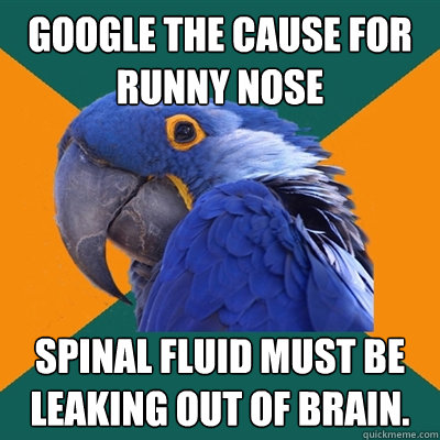 Google the cause for runny nose Spinal fluid must be leaking out of brain. - Google the cause for runny nose Spinal fluid must be leaking out of brain.  Paranoid Parrot