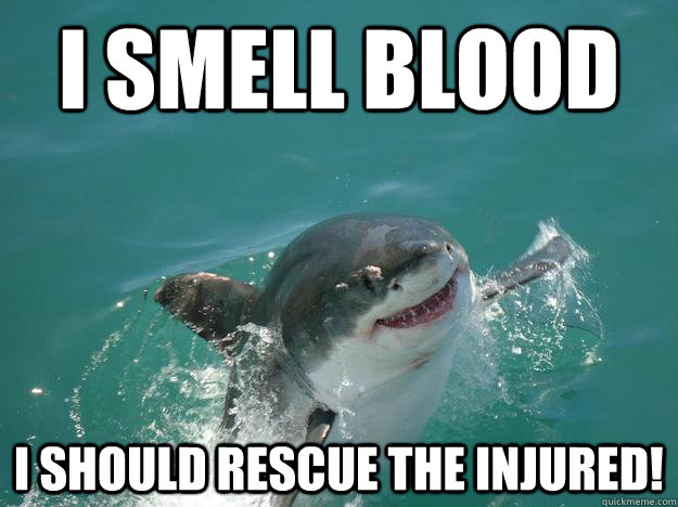 I smell blood I should rescue the injured!  Misunderstood Shark