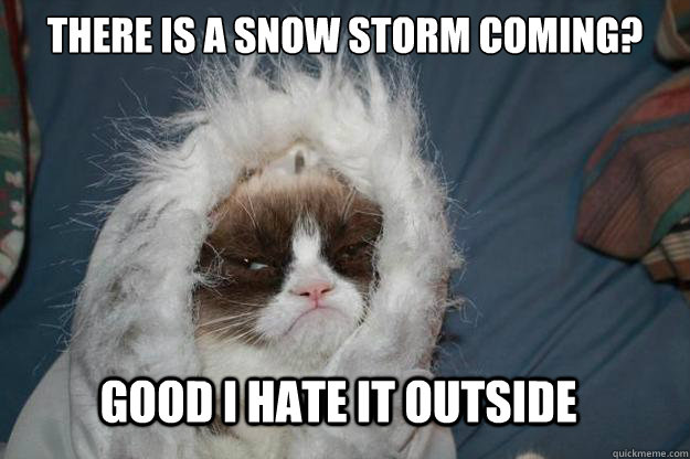 There is a snow storm coming?   GOOD i HATE IT OUTSIDE - There is a snow storm coming?   GOOD i HATE IT OUTSIDE  Cold Grumpy Cat