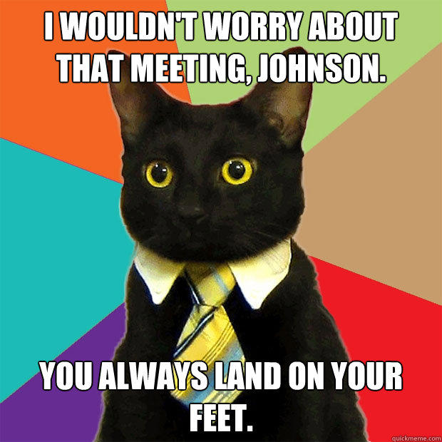 i wouldn't worry about that meeting, johnson. you always land on your feet. - i wouldn't worry about that meeting, johnson. you always land on your feet.  Business Cat