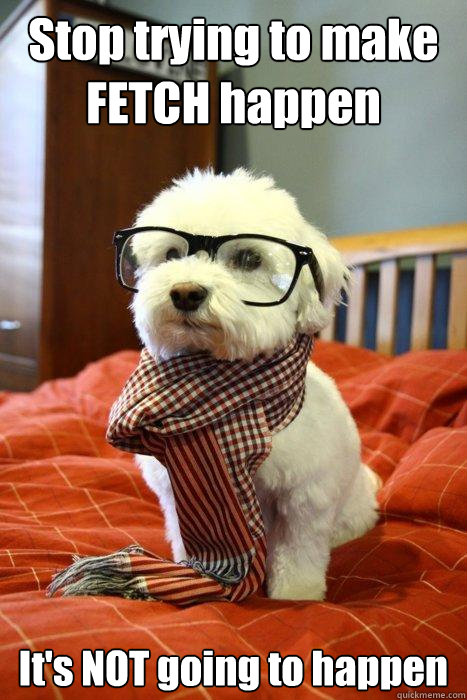 Stop trying to make FETCH happen It's NOT going to happen  Hipster Dog