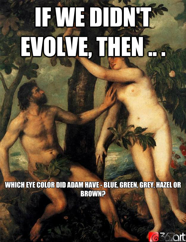 If we didn't evolve, then .. .  which eye color did Adam have - Blue, Green, Grey, Hazel or Brown? - If we didn't evolve, then .. .  which eye color did Adam have - Blue, Green, Grey, Hazel or Brown?  Scumbag Adam