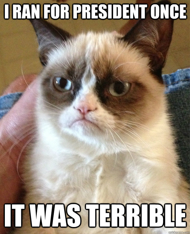 I Ran for president once it was terrible - I Ran for president once it was terrible  Grumpy Cat