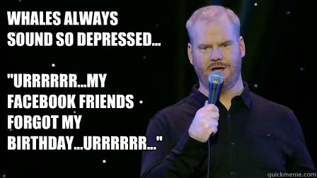 Whales always sound so depressed...