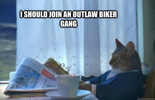 3316b134c1e99aca302dcd887ca9ceeb4cc4d7482c512180d844d3a6c539a038 i should join an outlaw biker gang sophisticated cat quickmeme,Biker Gang Meme