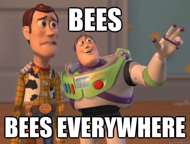 Bees Bees everywhere - Bees Bees everywhere  Buzz Lightyear