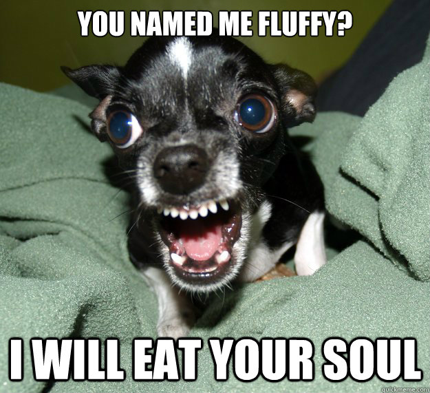 you NAMED ME FLUFFY? I WILL EAT YOUR SOUL