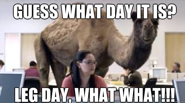 GUESS WHAT DAY IT IS? LEG DAY, WHAT WHAT!!!