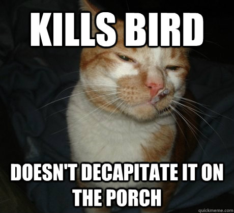Kills bird doesn't decapitate it on the porch