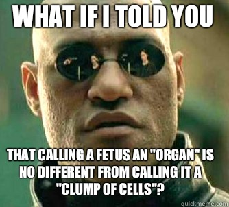 what if i told you That calling a fetus an