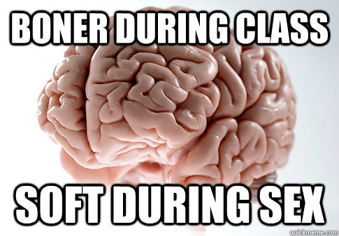 BONER DURING CLASS SOFT DURING SEX  - BONER DURING CLASS SOFT DURING SEX   Scumbag Brain