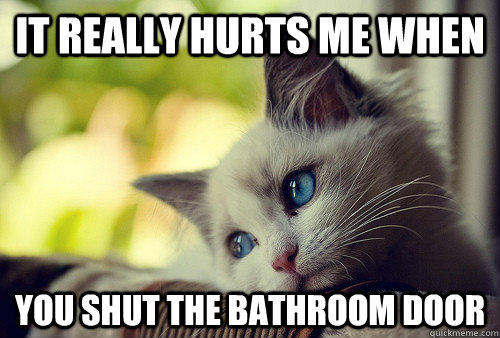 It really hurts me when You shut the bathroom door - It really hurts me when You shut the bathroom door  First World Problems Cat