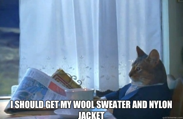 I should get my wool sweater and nylon jacket -  I should get my wool sweater and nylon jacket  Sophisticated Cat