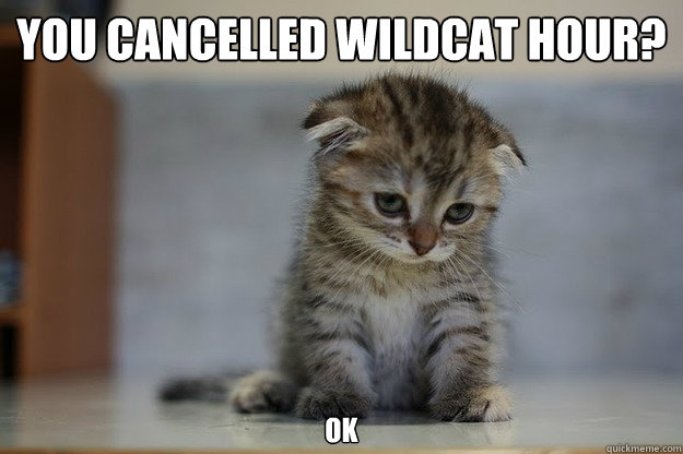 you cancelled wildcat hour? ok - you cancelled wildcat hour? ok  Sad Kitten