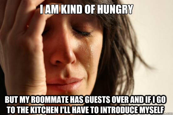 I am kind of hungry but my roommate has guests over and if I go to the kitchen I'll have to introduce myself - I am kind of hungry but my roommate has guests over and if I go to the kitchen I'll have to introduce myself  First World Problems