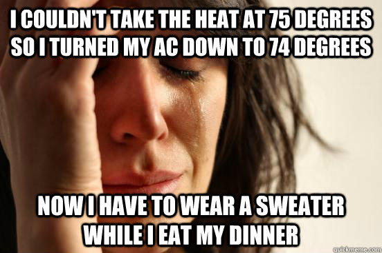 i couldn't take the heat at 75 degrees so i turned my AC down to 74 degrees now i have to wear a sweater while i eat my dinner - i couldn't take the heat at 75 degrees so i turned my AC down to 74 degrees now i have to wear a sweater while i eat my dinner  First World Problems