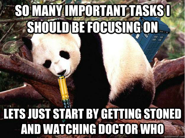 so many important tasks I should be focusing on lets just start by getting stoned and watching doctor who