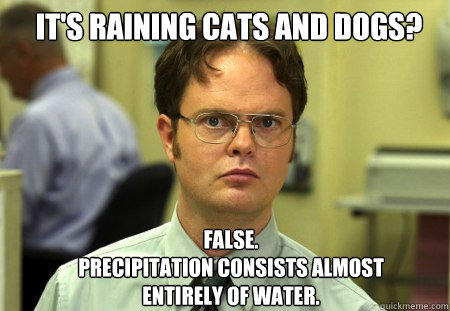 it's raining cats and dogs? FALSE.   Precipitation consists almost entirely of water. - it's raining cats and dogs? FALSE.   Precipitation consists almost entirely of water.  Schrute