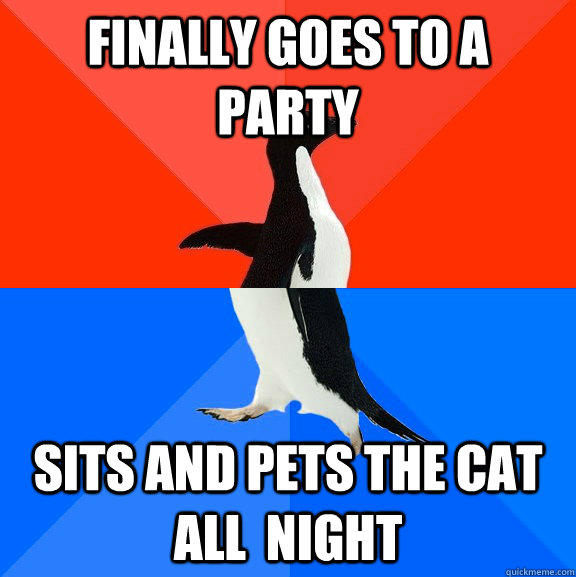 Finally goes to a party Sits and pets the cat all  night - Finally goes to a party Sits and pets the cat all  night  Socially Awesome Awkward Penguin
