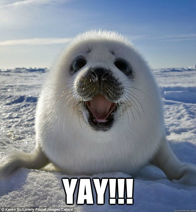 yAY!!! -  yAY!!!  Happy Weasel Seal