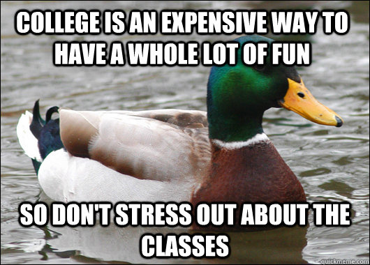 College is an expensive way to have a whole lot of fun So don't stress out about the classes - College is an expensive way to have a whole lot of fun So don't stress out about the classes  Actual Advice Mallard