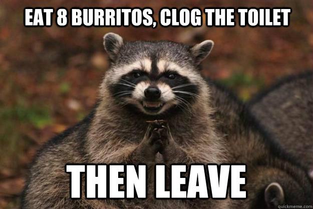 33b572354fbedfc70e03e5e608b2b7b11cda7ac9b2abd17f5c76dac66ffc6b06 eat 8 burritos, clog the toilet then leave evil plotting raccoon