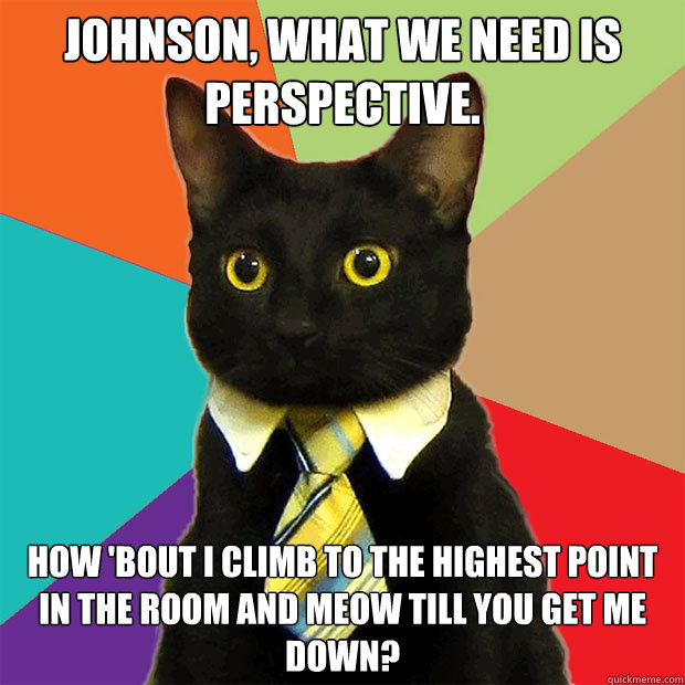 Johnson, what we need is perspective. How 'bout I climb to the highest point in the room and meow till you get me down? - Johnson, what we need is perspective. How 'bout I climb to the highest point in the room and meow till you get me down?  Business Cat