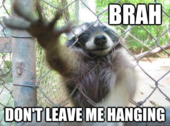 BRah Don't leave me hanging - BRah Don't leave me hanging  Bro Racoon