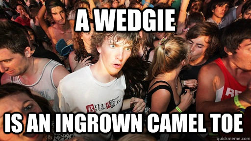 A wedgie is an ingrown camel toe - A wedgie is an ingrown camel toe  Sudden Clarity Clarence