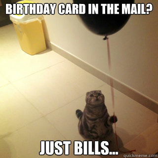 Birthday Card in the mail? just bills... - Birthday Card in the mail? just bills...  Sad Birthday Cat