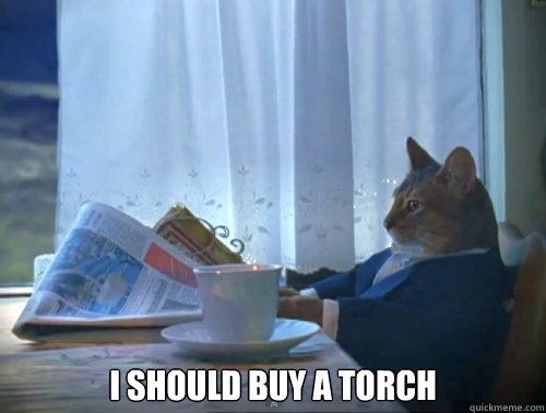 I should buy a torch -  I should buy a torch  The One Percent Cat