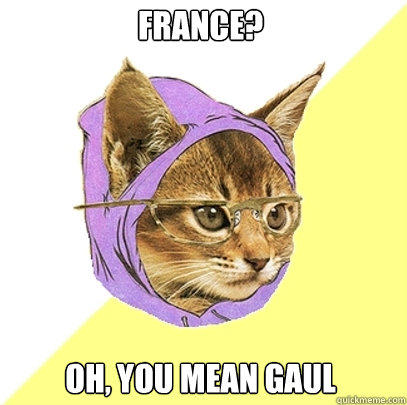 France? Oh, you mean gaul - France? Oh, you mean gaul  Hipster Kitty