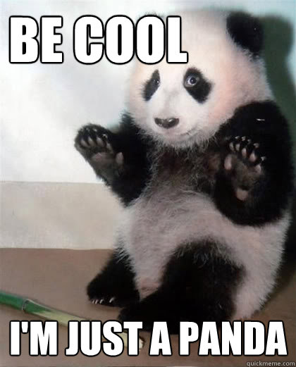 Be cool I'm just a panda