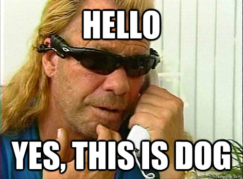 34268eff86ceb0b3b1a13cedd945c5ffcc3fd801c5db52c835f365b1b30b9b53 hello yes, this is dog dog the bounty hunter quickmeme