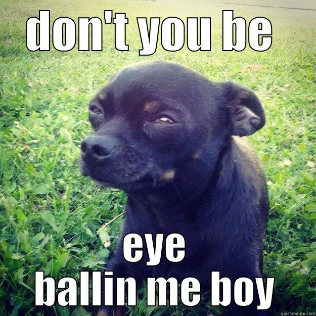 DON'T YOU BE  EYE BALLIN ME BOY Skeptical Dog