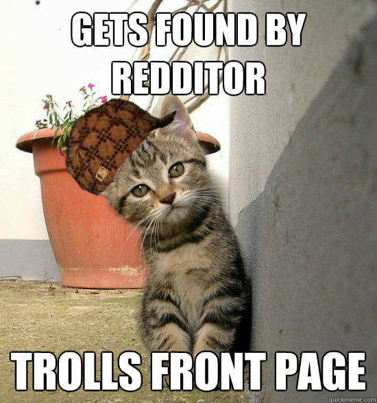 Gets found by redditor trolls front page - Gets found by redditor trolls front page  Scumbag Lost Kitty