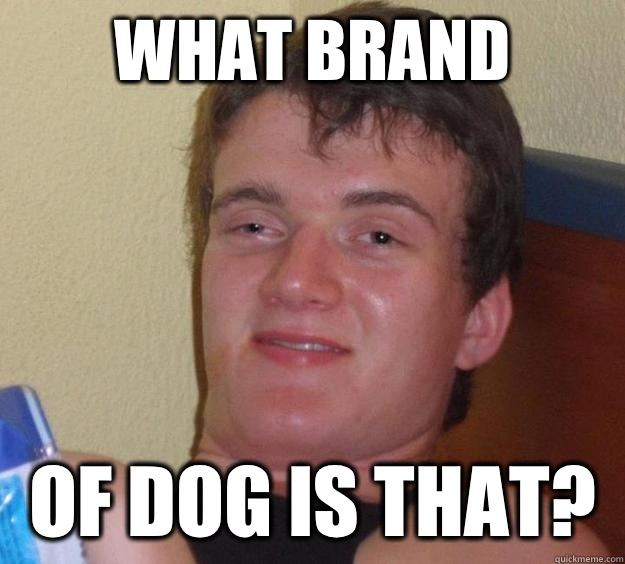 What brand Of dog is that? - What brand Of dog is that?  10 Guy