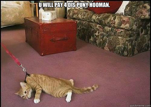 u will pay 4 dis puny hooman.