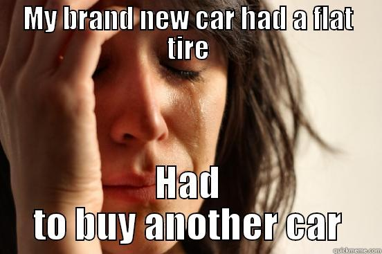 MY BRAND NEW CAR HAD A FLAT TIRE HAD TO BUY ANOTHER CAR First World Problems
