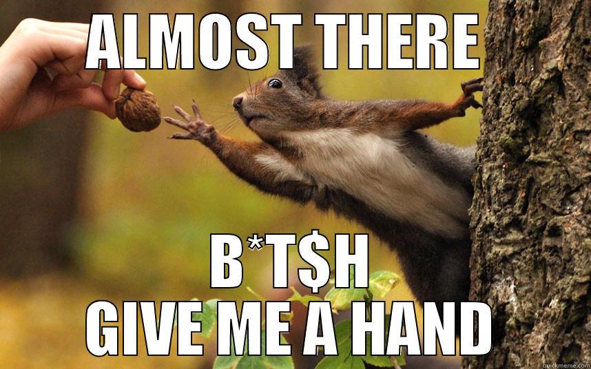 348a984fa98caa0cbf5e7925f9c0a552a78e53c4243495345074a277d4089315 squirrel nuts quickmeme,Squirrel Meme Nuts