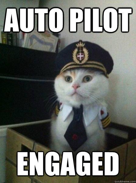 Auto pilot  engaged