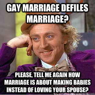 Gay marriage defiles marriage? Please, tell me again how marriage is about making babies instead of loving your spouse? - Gay marriage defiles marriage? Please, tell me again how marriage is about making babies instead of loving your spouse?  Condescending Wonka