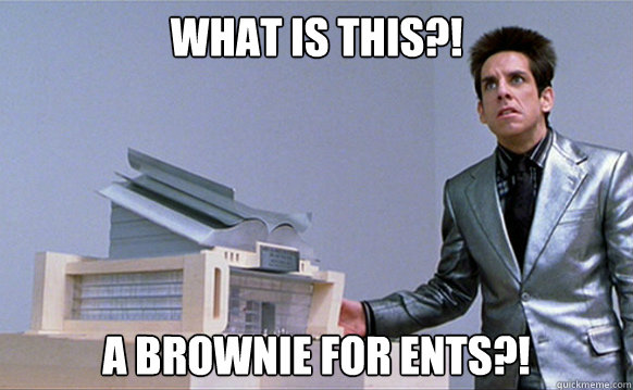 What is this?! A brownie for ents?!