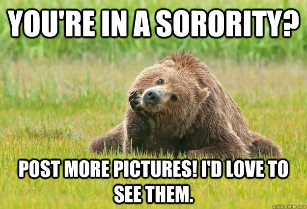34a266dd4c138882aec767b40907b204853da794b1512a65daee9a3c093d780e genuinely interested grizzly bear memes quickmeme