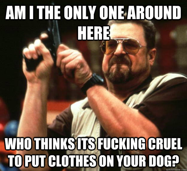 am I the only one around here Who thinks its fucking cruel to put clothes on your dog? - am I the only one around here Who thinks its fucking cruel to put clothes on your dog?  Angry Walter