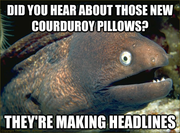 Did you hear about those new courduroy pillows? They're making headlines - Did you hear about those new courduroy pillows? They're making headlines  Bad Joke Eel