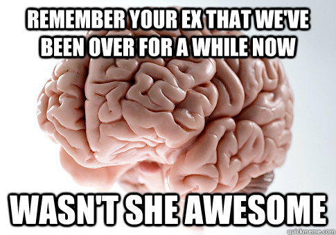remember your ex that we've been over for a while now wasn't she awesome - remember your ex that we've been over for a while now wasn't she awesome  Scumbag Brain