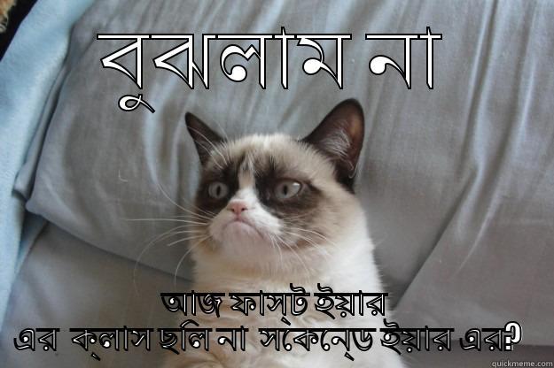 Confused Cat Quickmeme