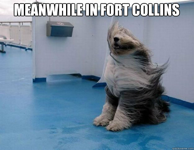 Windy weather really blows. - Lame Pun Coon - quickmeme